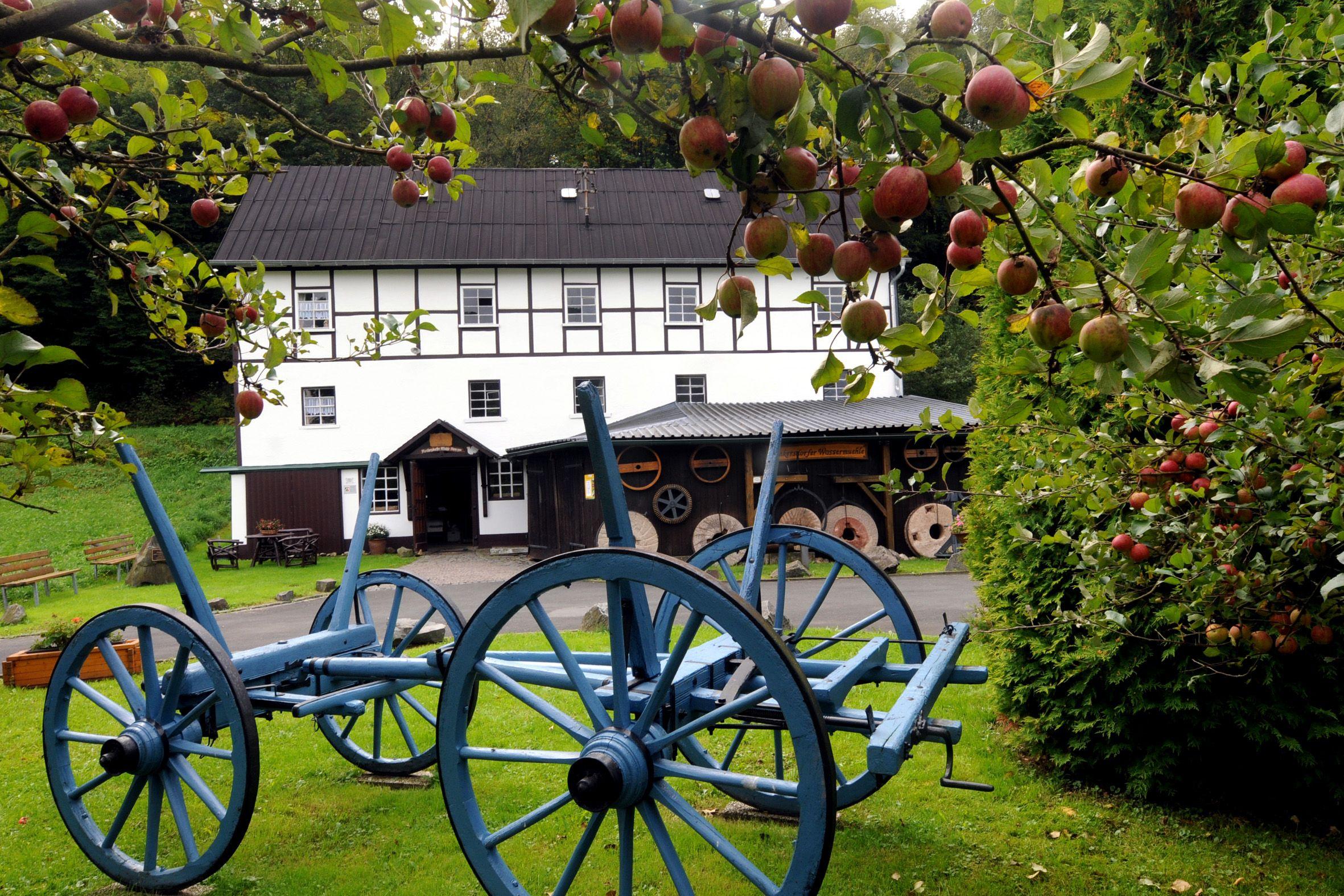 Mühle Nenkersdorf